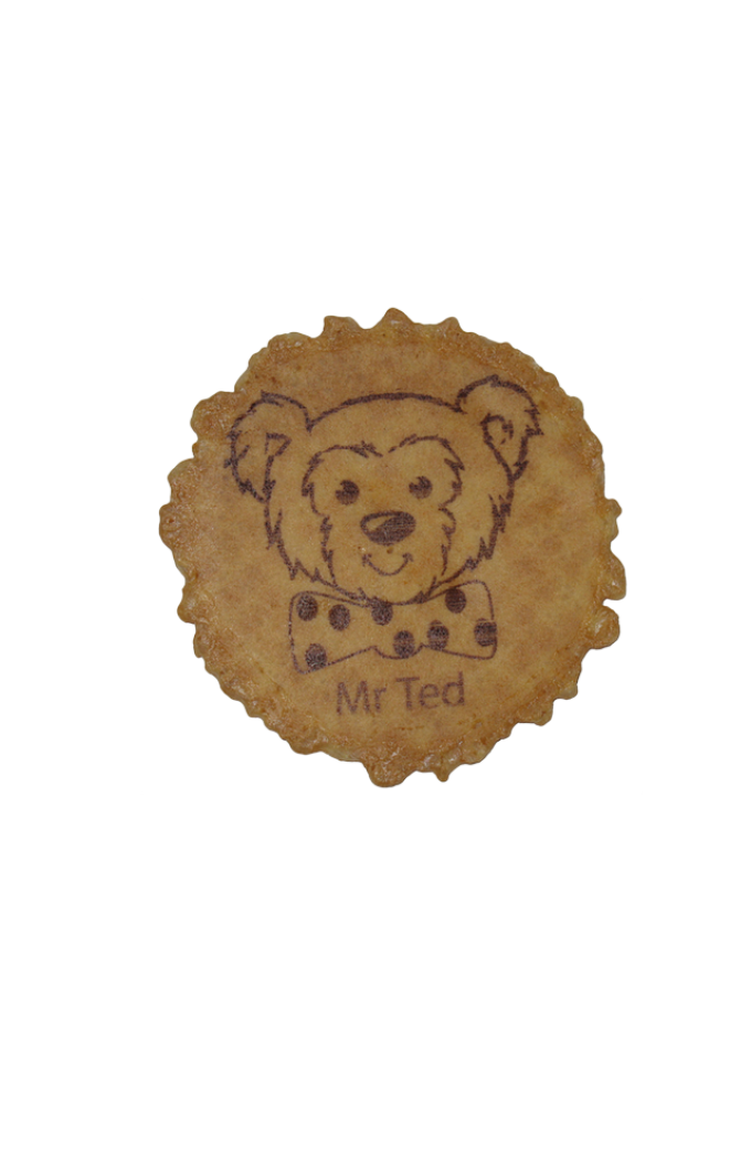 Mr Ted Web Pic