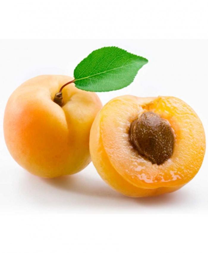 Brandy apricot